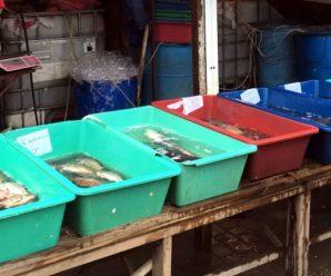 В Калуші зупинили незаконну торгівлю рибою та раками
