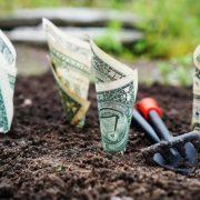Продаж землі в Україні: у Зеленського назвали дату початку