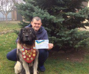 Франківська вівчарка стала чемпіоном України (ФОТО)