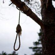 Опублікувала останнє фото в Instagram: 16-річну дівчину знайшли повішаною на дереві