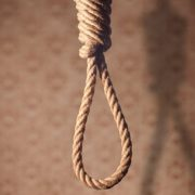 13-річну школярку знайшли мертвою на дереві