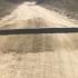 Водій думав що на дорозі лежить колода, але підійшовши ближче він посивів від побаченого…(ВІДЕО)