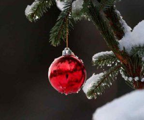 Зими не буде! Синоптики вразила прогнозом погоди на Новий рік. Все різко змінилося