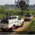 У Конго бойовики напали на табір боротьби з Еболою: є загиблі