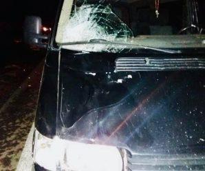 У Делятині в аварії загинула людина: поліція повідомила деталі. ФОТО