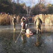 Українські надзвичайники врятували оленя з криги