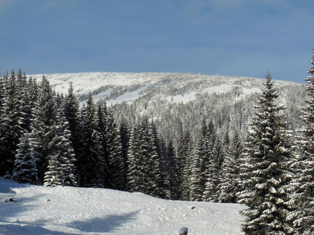Франківець пішов у похід на милицях заради неймовірних фото зимових Карпат 5