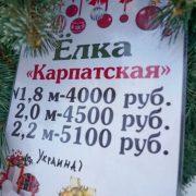 У Сімферополі продають ялинки з Івано-Франківщини: фото