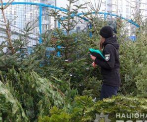 На Прикарпатті за незаконну порубку новорічних ялинок відкрили дві кримінальні справи
