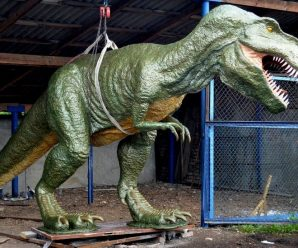 Родина не підтримала, син сказав, що це фігня: історія майстра з Коломиї, який робить динозаврів (ФОТО)