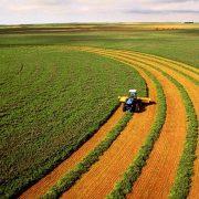 Експерт назвав основні переваги нового законопроекту про ринок землі