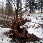 У всіх районах Прикарпаття створять комісії, щоби оцінити наслідки стихії
