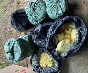 На Прикарпатті ліквідовано нарколабораторію, вилучено 80 кг прекурсорів та 45 кг марихуани, – Нацполіція. ФОТО