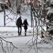 Прощаємось з зимою. Синоптики дали втішний прогноз: тепло та сонячно