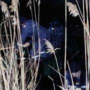 Моторошна трагедія: двоє дітей загинули страшною смертю на очах у третього – він не міг говорити
