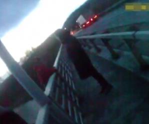 Вагітна жінка хотіла зістрибнути з моста: у Вінниці поліцейські врятували її. Неймовірне відео