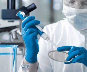 Серед перших – заробітчани: в одній з областей України розпочинають масову перевірку на коронавірус