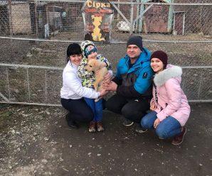 """У лютому калуський """"Дім Сірка"""" прилаштував 32 тваринки (Фото)"""