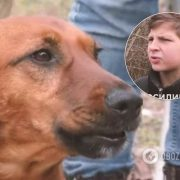 Ризикував життям: з'явилося показове відео порятунку собаки підлітком на Львівщині