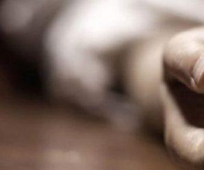 84-річну пенсіонерку з Прикарпаття підозрюють у вбивстві сина