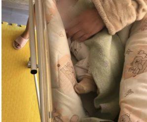 Київська клініка продавала новонароджених малюків за кордон під прикриттям сурогатного материнства (фото)
