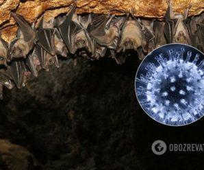 Вчені виявили COVID-19 ще в 2013 році