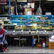 Їли мишей і вовків: в китайському місті Ухань на 5 років заборонили продавати і їсти диких тварин