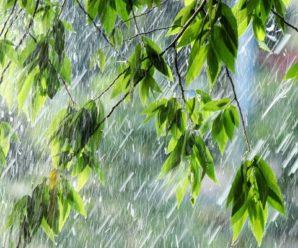 «Сильні грози, град, шквали, смерчі»: метеоролог попередила про жахливі капризи погоди в Україні