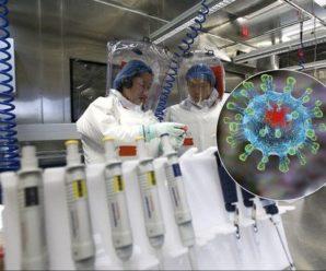 Вчені заявили, що коронавірус пішов не з ринку в Ухані