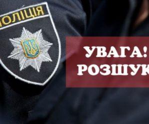По дорозі з Франківська до Коломиї зникла жінка, рідні просять допомогти в пошуку (ФОТОФАКТ)