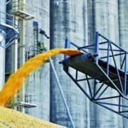 Розкрадання 150 тисяч тонн зерна: у МВС пояснили, чому раніше не перевіряли Держрезерв