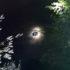Тіло водія, автомобіль якого тиждень тому впав у ріку на Верховинщині, знайшли у сусідньому районі