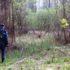 Вже більше тижня неподалік Франківська шукають чоловіка, котрий пішов у ліс і не повернувся