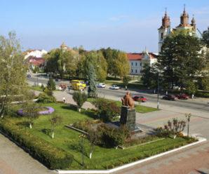 Прикарпатець зареєстрував петицію до Зеленського з вимогою приєднати Богородчанщину до Франківського району