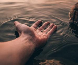 На Прикарпатті на березі Бистриці знайшли тіло жінки, яку шукали з 25 червня