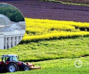 Українців хочуть змусити платити за землю по-новому: нововведення торкнеться навіть пенсіонерів