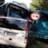 У ДТП в Польщі постраждали дві українки (ФОТО, ВІДЕО)